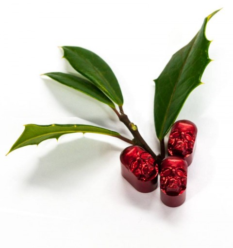 Blog Image for Product Photography Holly Berries