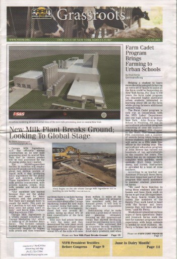 Media Scan for New York Grassroots