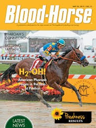 Media Scan for Blood Horse