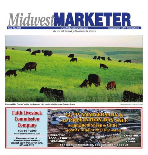 Media Scan for Midwest Marketer