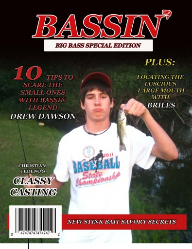Media Scan for Bassin'