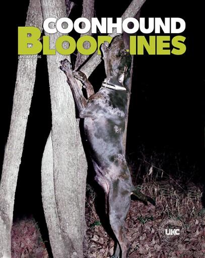 Media Scan for Coonhound Bloodlines