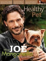 Media Scan for Healthy Pet Magazine