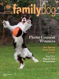 Media Scan for AKC Family Dog