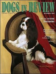 Media Scan for Dogs in Review
