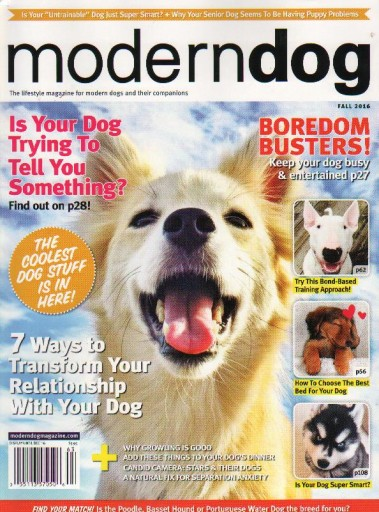 Media Scan for ModernDog
