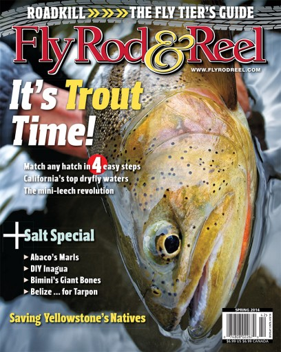 Media Scan for Fly Rod & Reel