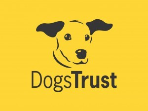 Media Scan for Dogs Trust CM