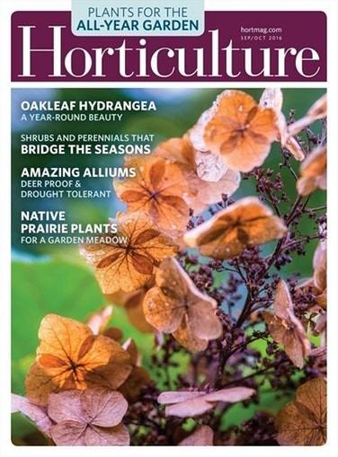 Media Scan for Horticulture