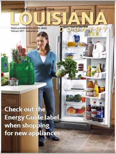 Media Scan for Louisiana Country