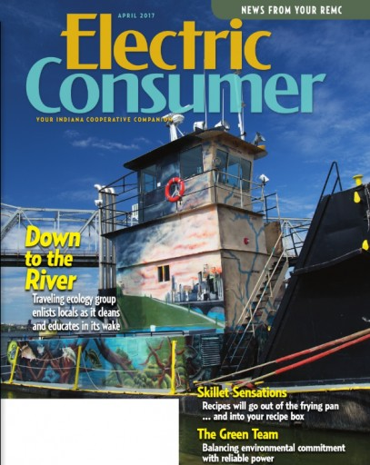 Media Scan for Electric Consumer IN
