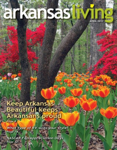 Media Scan for Arkansas Living