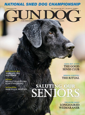 Media Scan for Gun Dog Magazine