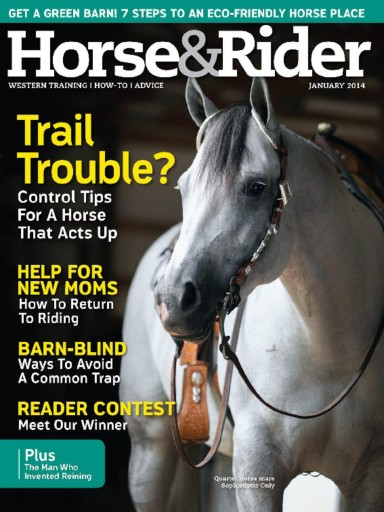 Media Scan for Horse & Rider