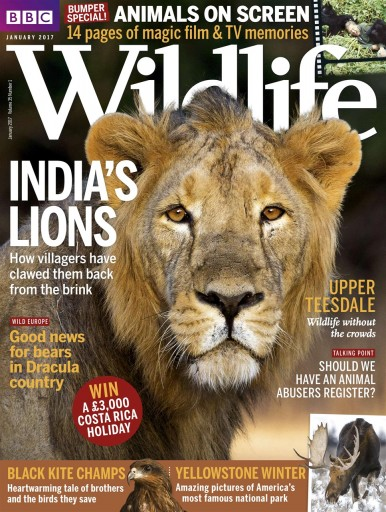 Media Scan for BBC Wildlife