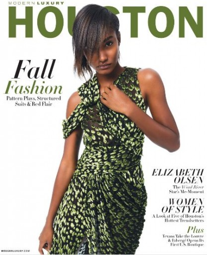 Media Scan for Houston Modern Luxury