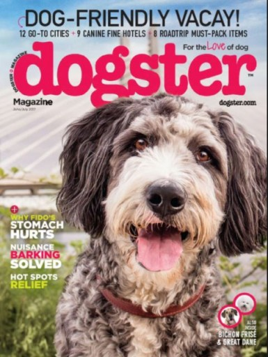 Media Scan for Dogster