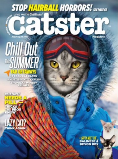 Media Scan for Catster