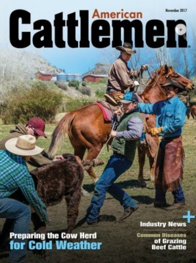 Media Scan for American Cattlemen