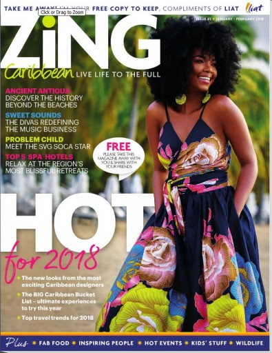 Media Scan for Zing- Liat In-Flight Magazine