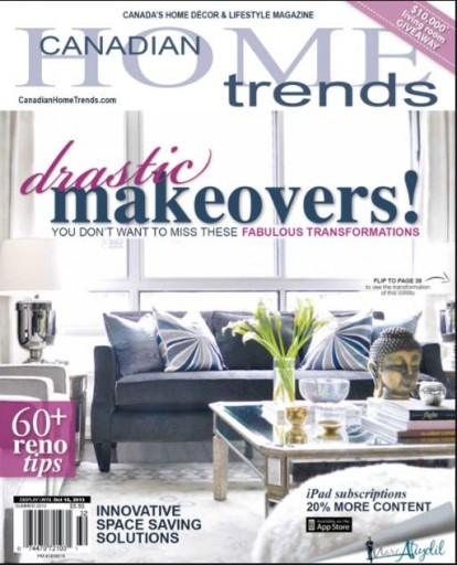 Media Scan for Canadian Home Trends